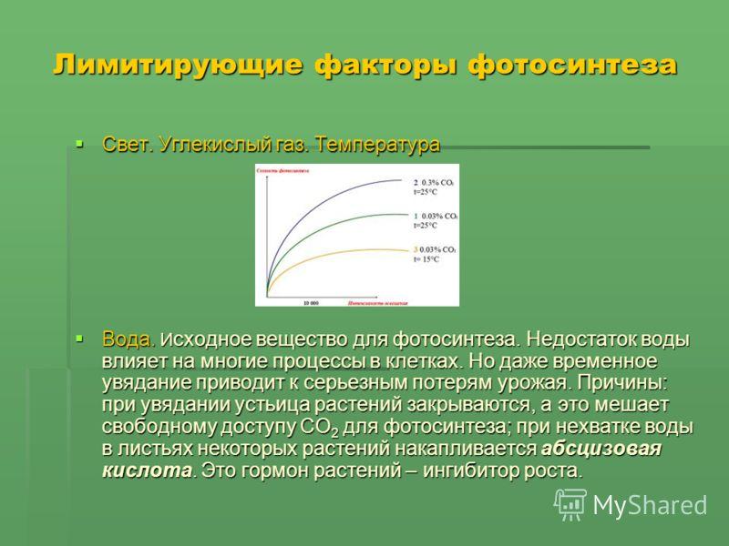 Лимитирующие факторы фотосинтеза Свет. Углекислый газ. Температура Свет. Углекислый газ. Температура Вода. И сходное вещество для фотосинтеза. Недостаток воды влияет на многие процессы в клетках. Но даже временное увядание приводит к серьезным потеря