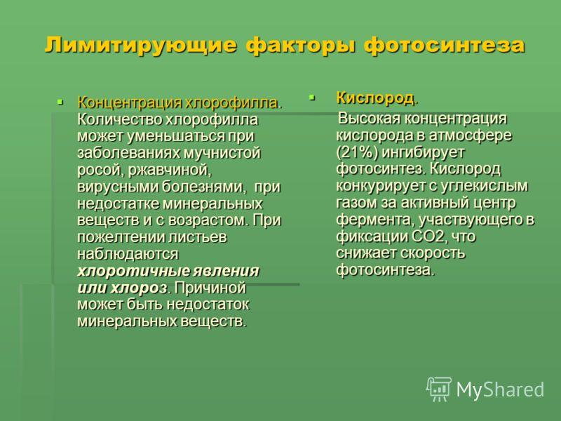 Лимитирующие факторы фотосинтеза Концентрация хлорофилла. Количество хлорофилла может уменьшаться при заболеваниях мучнистой росой, ржавчиной, вирусными болезнями, при недостатке минеральных веществ и с возрастом. При пожелтении листьев наблюдаются х