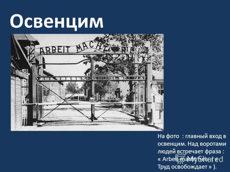 Освенцим На фото : главный вход в освенцим. Над воротами людей встречает фраза : « Arbeit macht frei» ( « Труд освобождает » ).