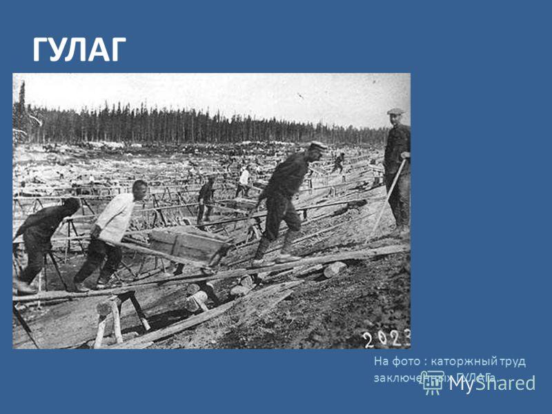 ГУЛАГ На фото : каторжный труд заключенных ГУЛАГа.