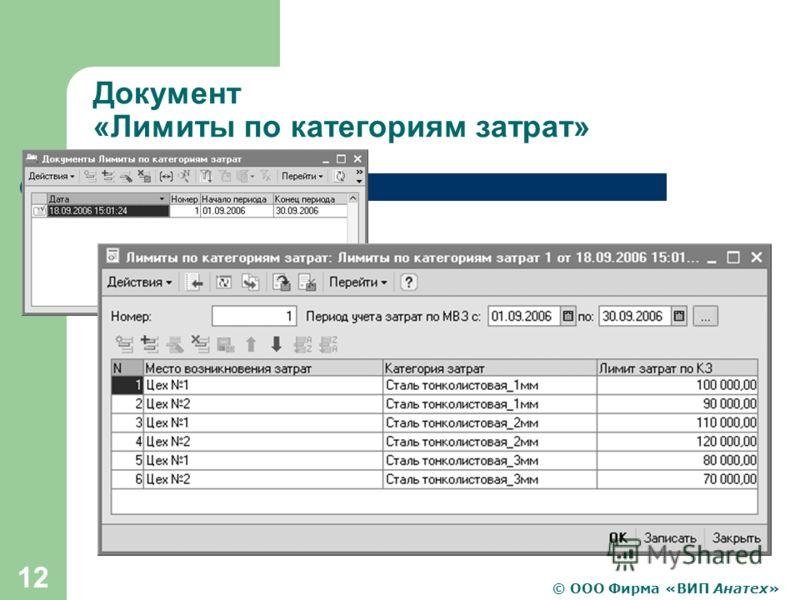 © ООО Фирма «ВИП Анатех» 12 Документ «Лимиты по категориям затрат»