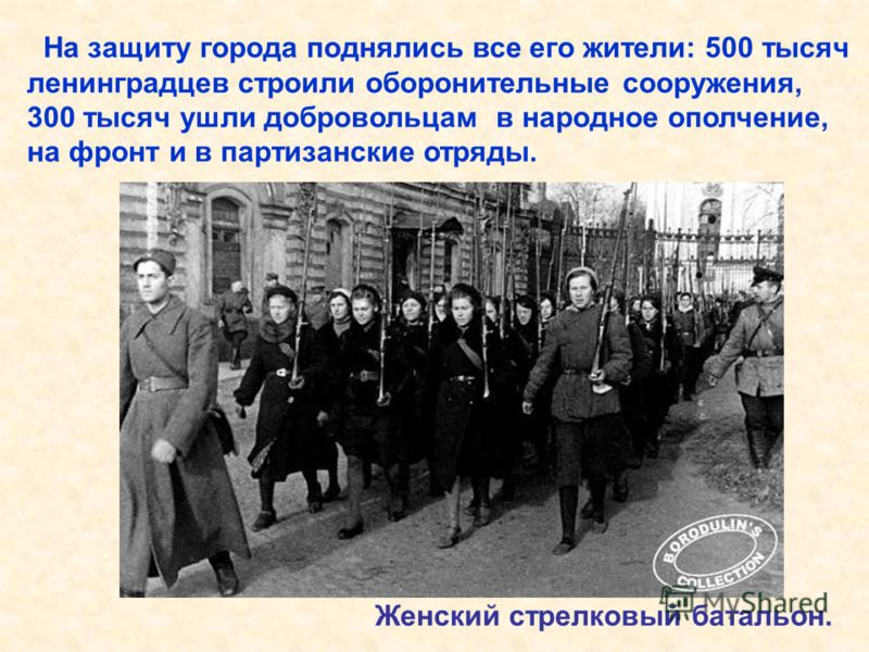 На защиту города поднялись все его жители: 500 тысяч ленинградцев строили оборонительные сооружения, 300 тысяч ушли добровольцам в народное ополчение, на фронт и в партизанские отряды. Женский стрелковый батальон. На защиту города поднялись все его ж