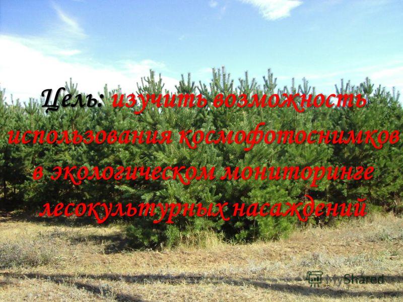 Цель: изучить возможность использования космофотоснимков в экологическом мониторинге лесокультурных насаждений