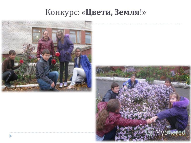 Конкурс : « Цвети, Земля !»