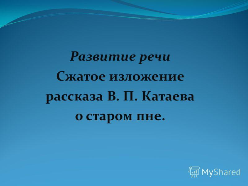 Развитие речи Сжатое изложение рассказа В. П. Катаева о старом пне.