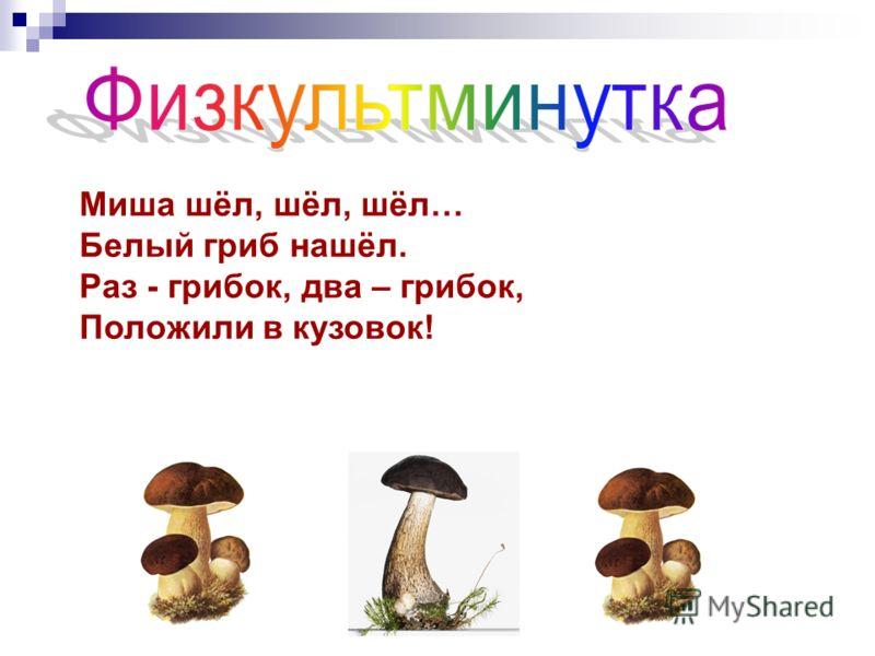 Миша шёл, шёл, шёл… Белый гриб нашёл. Раз - грибок, два – грибок, Положили в кузовок!