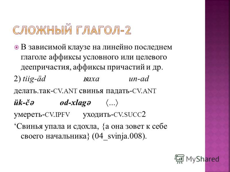 В зависимой клаузе на линейно последнем глаголе аффиксы условного или целевого деепричастия, аффиксы причастий и др. 2) tiig-äd ʁ axaun-ad делать.так- CV. ANT свиньяпадать- CV. ANT ük-č ǝ od-xlag ǝ... умереть- CV. IPFV уходить- CV. SUCC 2 Свинья упал
