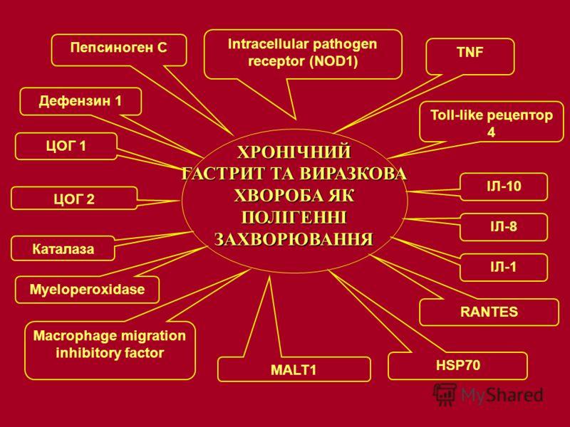 ХРОНІЧНИЙ ГАСТРИТ ТА ВИРАЗКОВА ХВОРОБА ЯК ПОЛІГЕННІ ЗАХВОРЮВАННЯ Intracellular pathogen receptor (NOD1) TNF Toll-like рецептор 4 Macrophage migration inhibitory factor MALT1 Myeloperoxidase ЦОГ 1 RANTES Пепсиноген C Дефензин 1 Каталаза ЦОГ 2 ІЛ-10 ІЛ