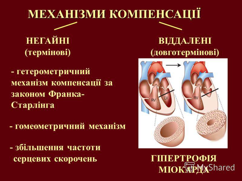 МЕХАНІЗМИ КОМПЕНСАЦІЇ НЕГАЙНІ (термінові) - гетерометричний механізм компенсації за законом Франка- Старлінга - гомеометричний механізм - збільшення частоти серцевих скорочень ГІПЕРТРОФІЯ МІОКАРДА ВІДДАЛЕНІ (довготермінові)