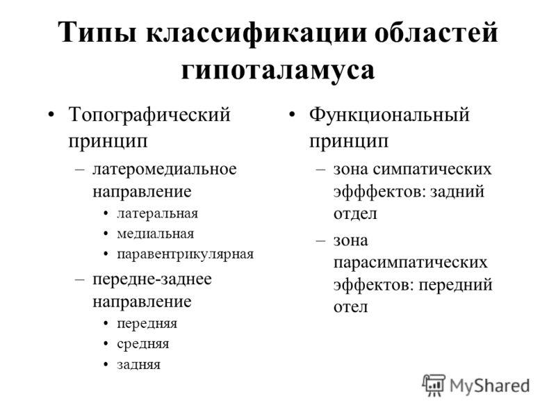 Типы классификации областей гипоталамуса Топографический принцип –латеромедиальное направление латеральная медиальная паравентрикулярная –передне-заднее направление передняя средняя задняя Функциональный принцип –зона симпатических эфффектов: задний
