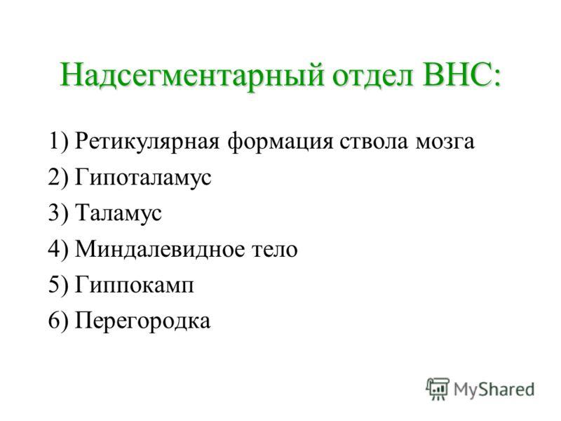 Надсегментарный отдел ВНС: 1) Ретикулярная формация ствола мозга 2) Гипоталамус 3) Таламус 4) Миндалевидное тело 5) Гиппокамп 6) Перегородка