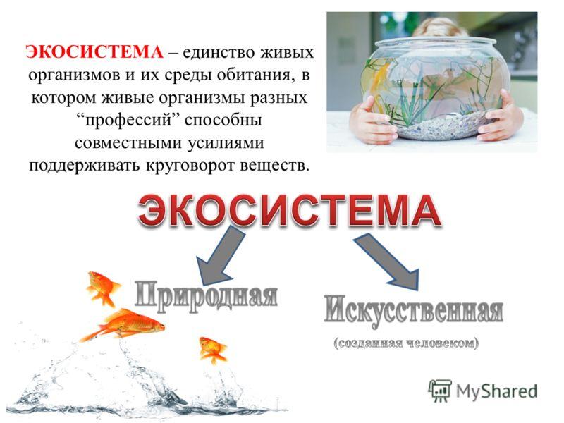 ЭКОСИСТЕМА – единство живых организмов и их среды обитания, в котором живые организмы разных профессий способны совместными усилиями поддерживать круговорот веществ.