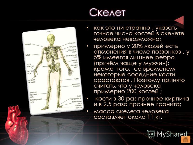как это ни странно, указать точное число костей в скелете человека невозможно; примерно у 20% людей есть отклонения в числе позвонков, у 5% имеется лишнее ребро (причём чаще у мужчин); кроме того, со временем некоторые соседние кости срастаются. Поэт