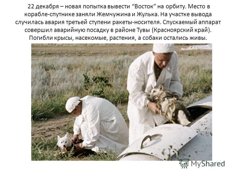 22 декабря – новая попытка вывести Восток на орбиту. Место в корабле-спутнике заняли Жемчужина и Жулька. На участке вывода случилась авария третьей ступени ракеты-носителя. Спускаемый аппарат совершил аварийную посадку в районе Тувы (Красноярский кра
