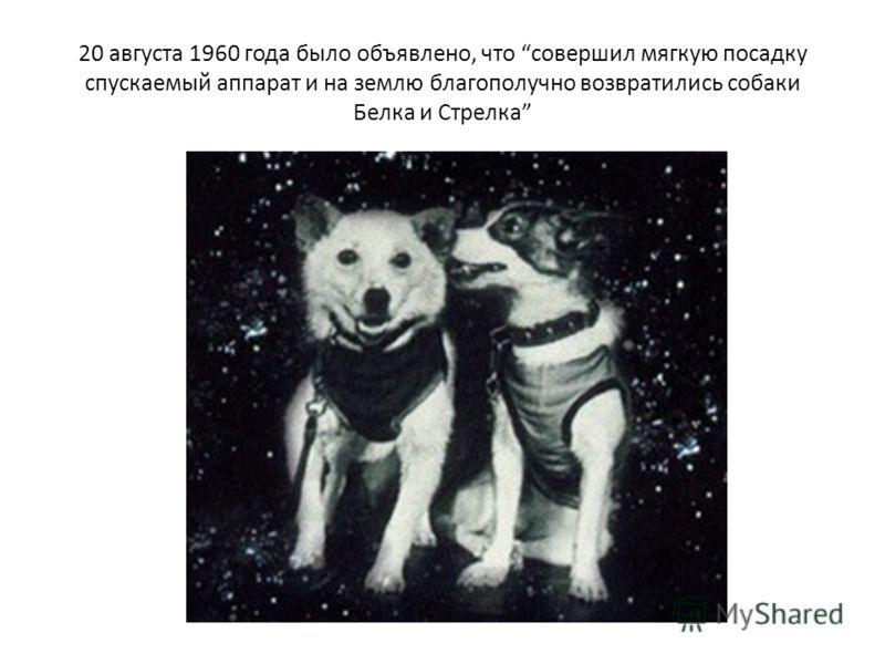 20 августа 1960 года было объявлено, что совершил мягкую посадку спускаемый аппарат и на землю благополучно возвратились собаки Белка и Стрелка