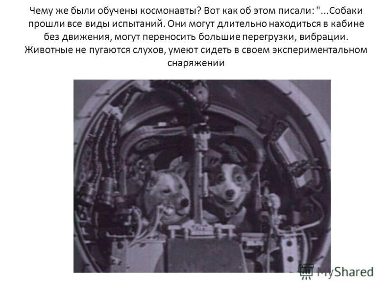 Чему же были обучены космонавты? Вот как об этом писали:
