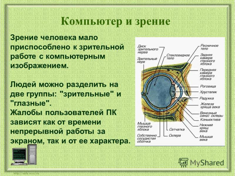 Компьютер и зрение Зрение человека мало приспособлено к зрительной работе с компьютерным изображением. Людей можно разделить на две группы: