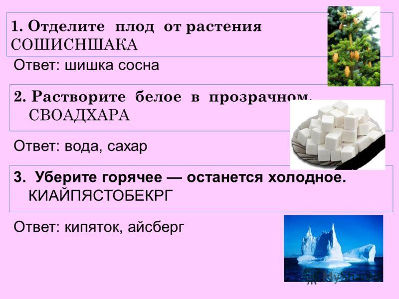 1. Отделите плод от растения СОШИСНШАКА Ответ: шишка сосна 2. Растворите белое в прозрачном. СВОАДХАРА Ответ: вода, сахар 3. Уберите горячее останется холодное. КИАЙПЯСТОБЕКРГ Ответ: кипяток, айсберг