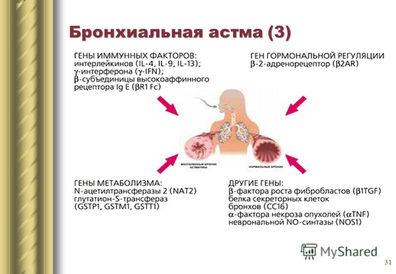 31 Бронхиальная астма (3)