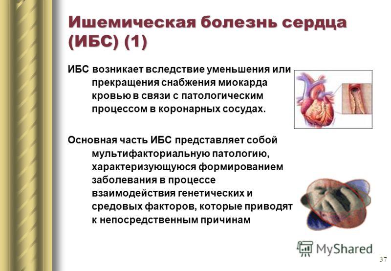 37 Ишемическая болезнь сердца (ИБС) (1) ИБС возникает вследствие уменьшения или прекращения снабжения миокарда кровью в связи с патологическим процессом в коронарных сосудах. Основная часть ИБС представляет собой мультифакториальную патологию, характ