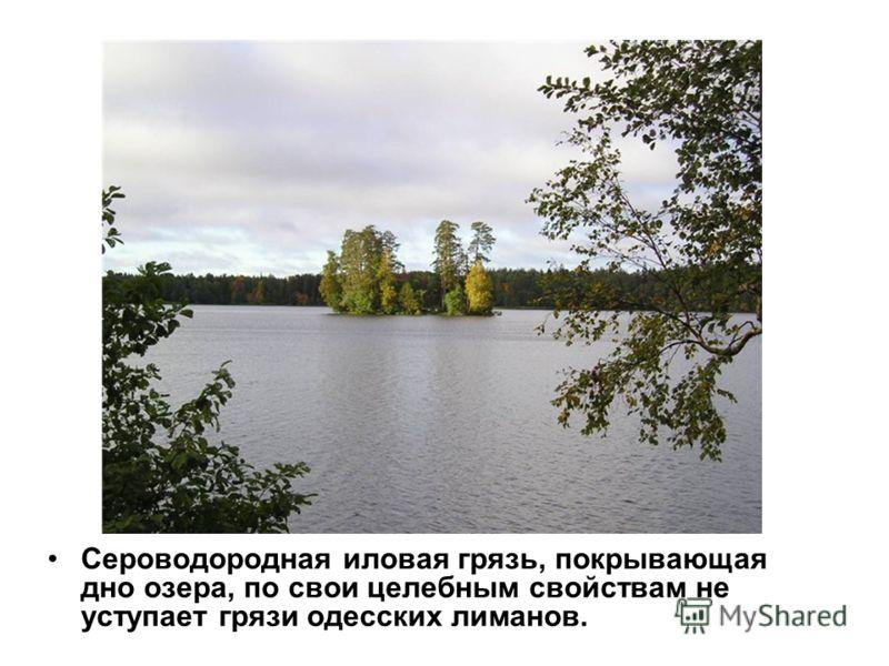 Сероводородная иловая грязь, покрывающая дно озера, по свои целебным свойствам не уступает грязи одесских лиманов.