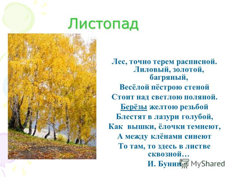 Листопад Лес, точно терем расписной. Лиловый, золотой, багряный, Весёлой пёстрою стеной Стоит над светлою поляной. Берёзы желтою резьбой Блестят в лазури голубой, Как вышки, ёлочки темнеют, А между клёнами синеют То там, то здесь в листве сквозной… И