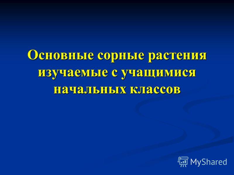 Автор: Ахмадиярова Светлана Рушановна МБОУ «Прогимназия» г. Сургут РФ Учитель начальных классов