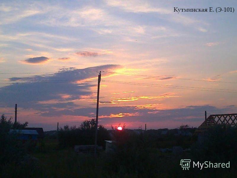 Кутминская Е. (Э-101)