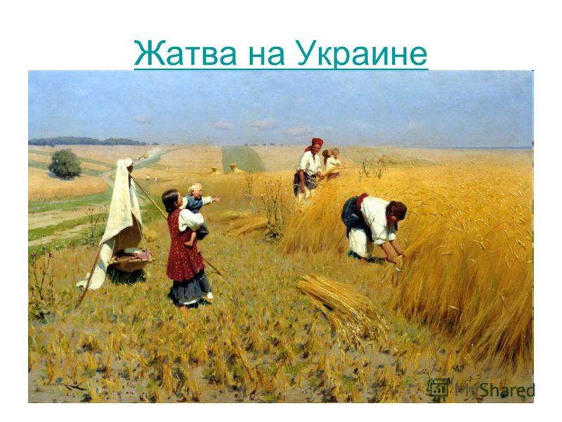 Жатва на Украине