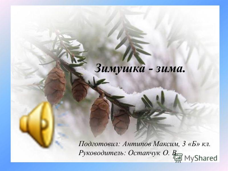 Подготовил: Антипов Максим, 3 «Б» кл. Руководитель: Остапчук О. В. Зимушка - зима.