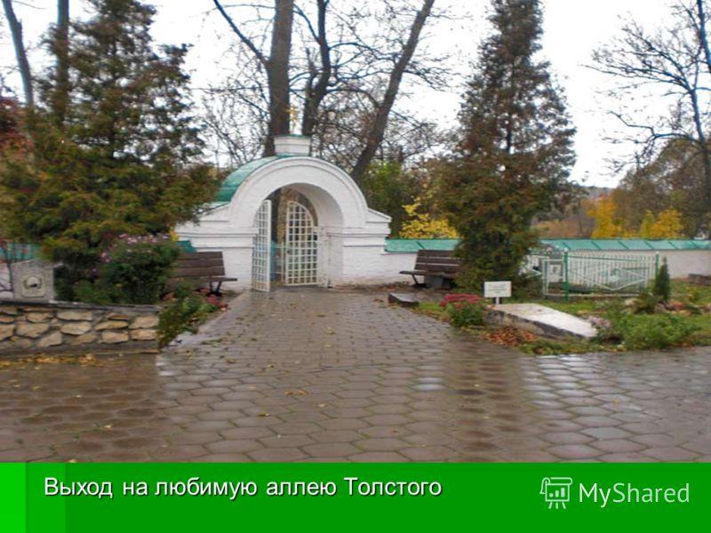 Выход на любимую аллею Толстого