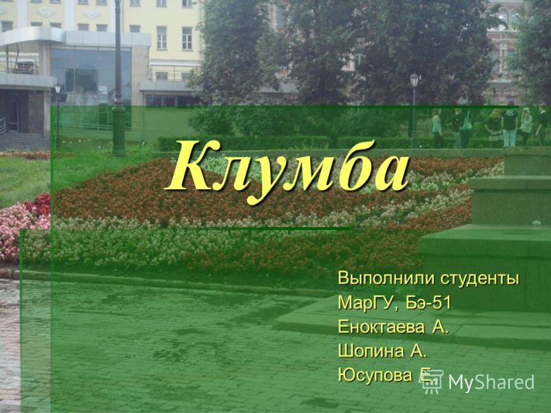Клумба Выполнили студенты МарГУ, Бэ-51 Еноктаева А. Шопина А. Юсупова Е.