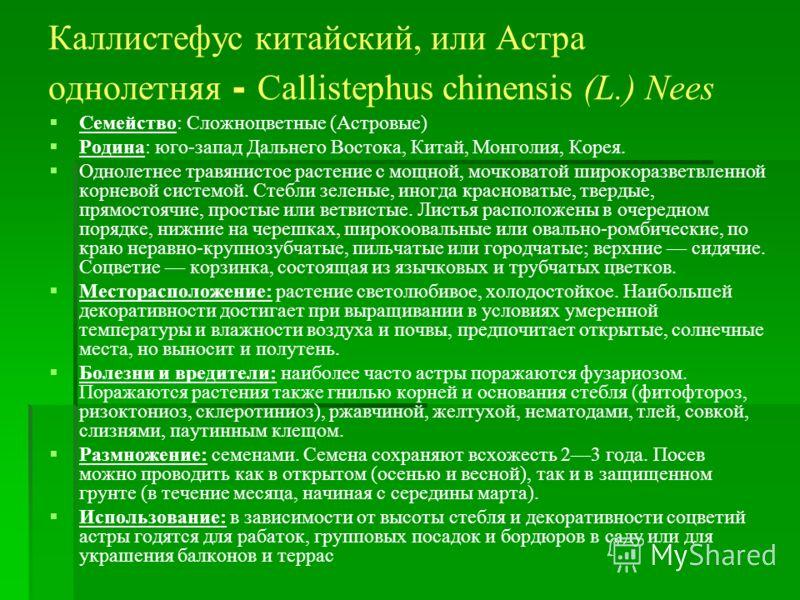 Каллистефус китайский, или Астра однолетняя - Сallistephus chinensis (L.) Nees Семейство: Сложноцветные (Астровые) Родина: юго-запад Дальнего Востока, Китай, Монголия, Корея. Однолетнее травянистое растение с мощной, мочковатой широкоразветвленной ко