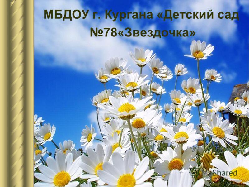 МБДОУ г. Кургана «Детский сад 78«Звездочка»