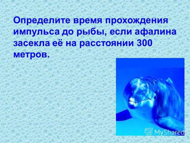 Определите время прохождения импульса до рыбы, если афалина засекла её на расстоянии 300 метров.