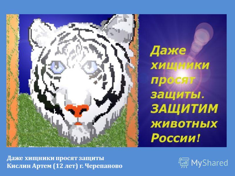 Даже хищники просят защиты Кислин Артем (12 лет) г. Черепаново