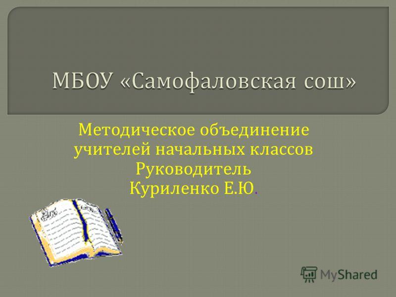 Методическое объединение учителей начальных классов Руководитель Куриленко Е. Ю.