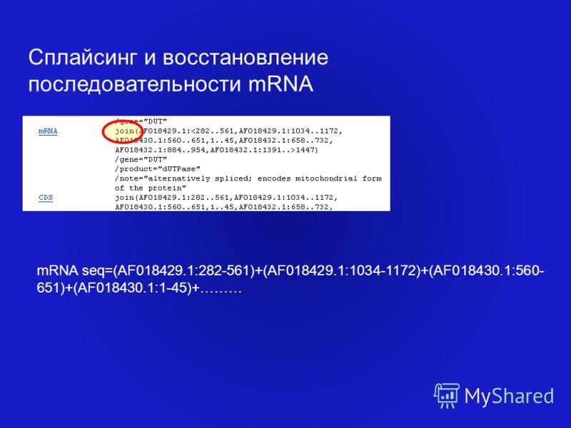 Сплайсинг и восстановление последовательности mRNA mRNA seq=(AF018429.1:282-561)+(AF018429.1:1034-1172)+(AF018430.1:560- 651)+(AF018430.1:1-45)+………