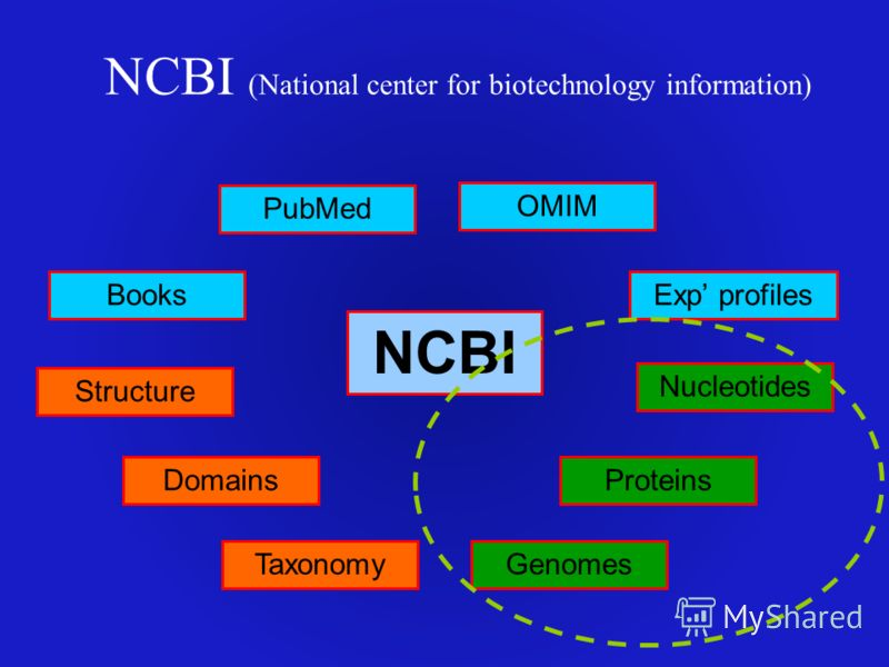 NCBI (National center for biotechnology information) NCBI PubMed Books OMIM Nucleotides Proteins GenomesTaxonomy Structure Domains Exp profiles