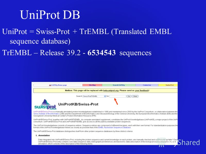 UniProt DB UniProt = Swiss-Prot + TrEMBL (Translated EMBL sequence database) TrEMBL – Release 39.2 - 6534543 sequences