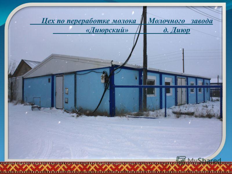 2011 годИжемский район, село Сизябск13 Цех по переработке молока Молочного завода «Диюрский» д. Диюр