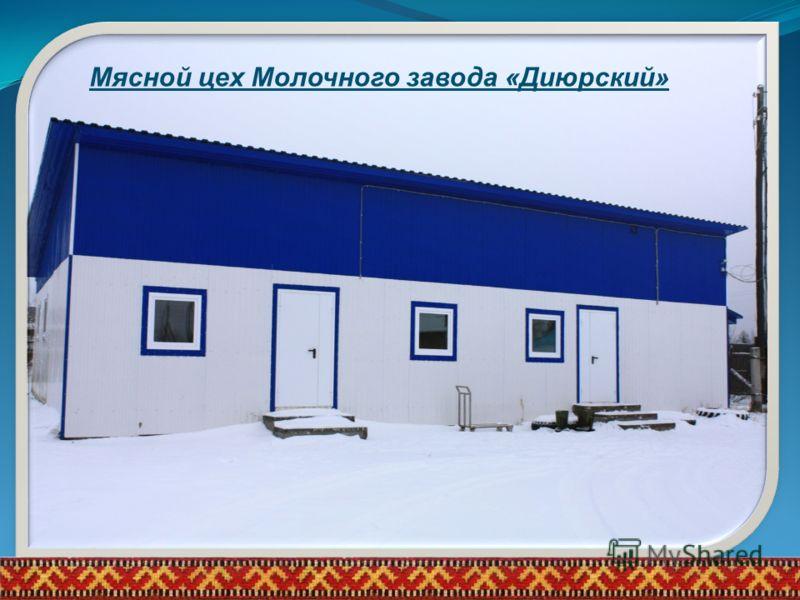 Мясной цех Молочного завода «Диюрский»