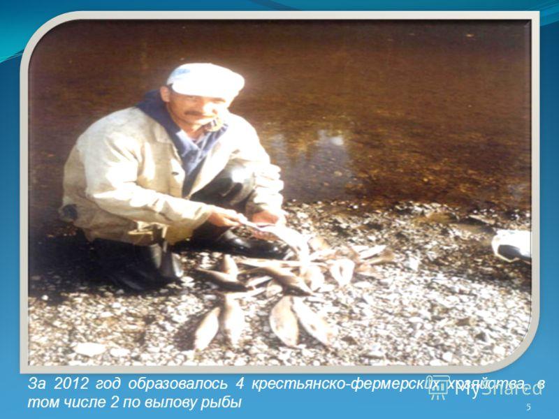 5 За 2012 год образовалось 4 крестьянско-фермерских хозяйства, в том числе 2 по вылову рыбы
