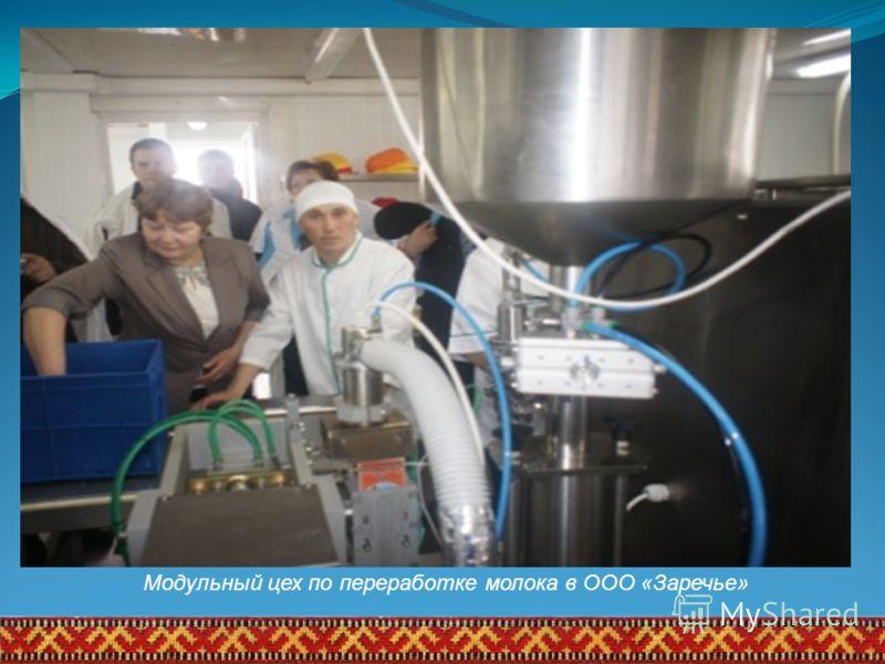 Модульный цех по переработке молока в ООО «Заречье»