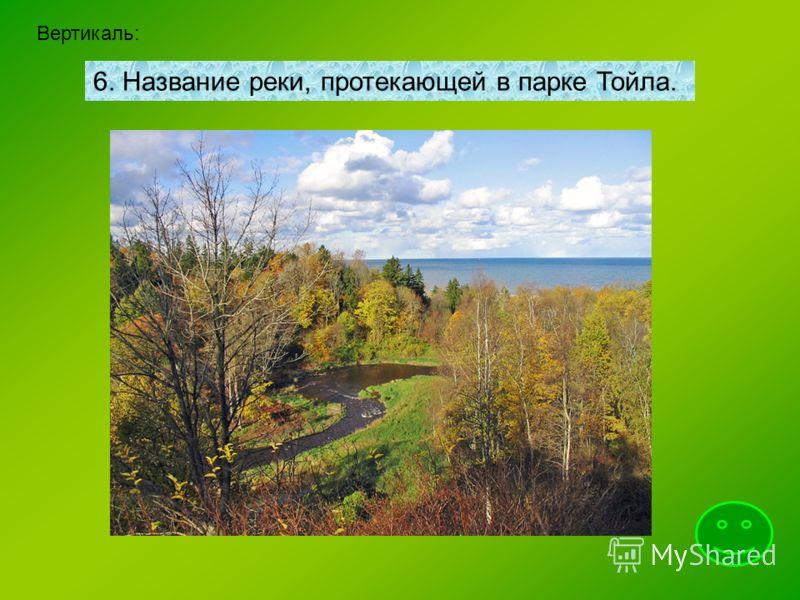 Вертикаль: 6. Название реки, протекающей в парке Тойла.