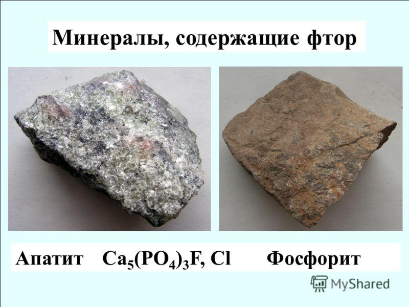 Минералы, содержащие фтор Апатит Ca 5 (PO 4 ) 3 F, Cl Фосфорит