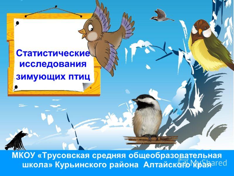 Статистические исследования зимующих птиц МКОУ «Трусовская средняя общеобразовательная школа» Курьинского района Алтайского края