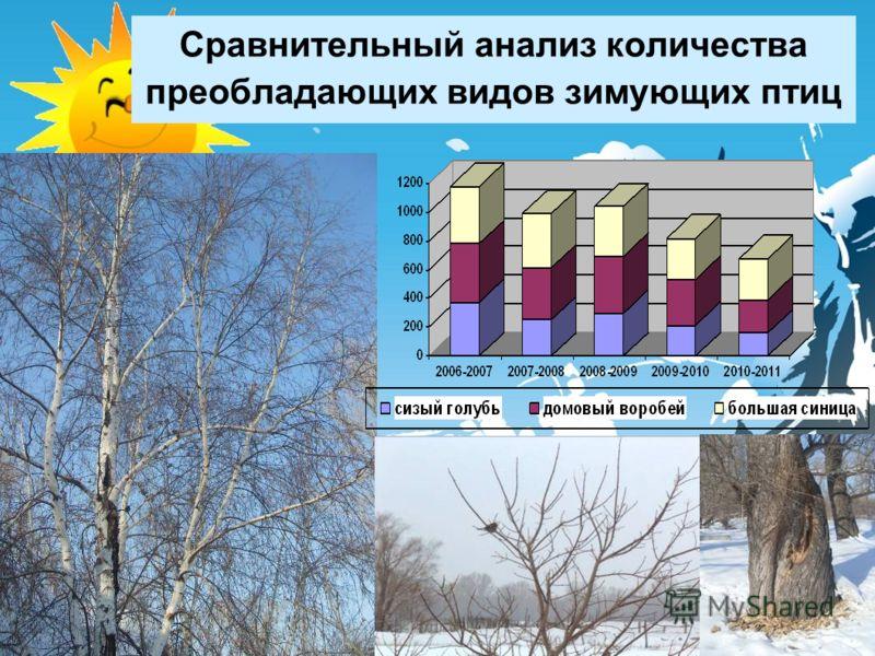 Сравнительный анализ количества преобладающих видов зимующих птиц