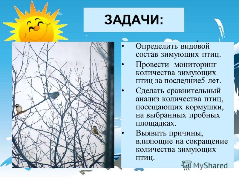 ЗАДАЧИ: Определить видовой состав зимующих птиц. Провести мониторинг количества зимующих птиц за последние5 лет. Сделать сравнительный анализ количества птиц, посещающих кормушки, на выбранных пробных площадках. Выявить причины, влияющие на сокращени