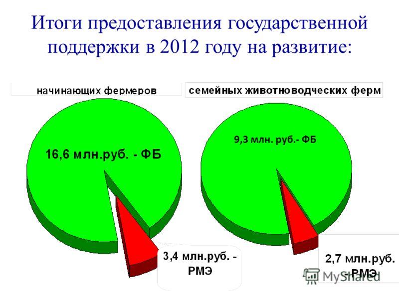 Итоги предоставления государственной поддержки в 2012 году на развитие: 9,3 млн. руб.- ФБ
